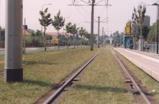 Turfed tram line